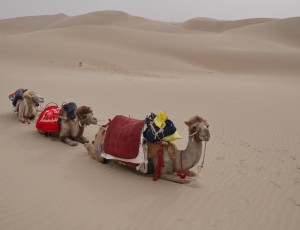 Wild Wild West – Xinjiang (part 2)
